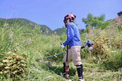 傾斜地での下草刈りに汗を流す参加者